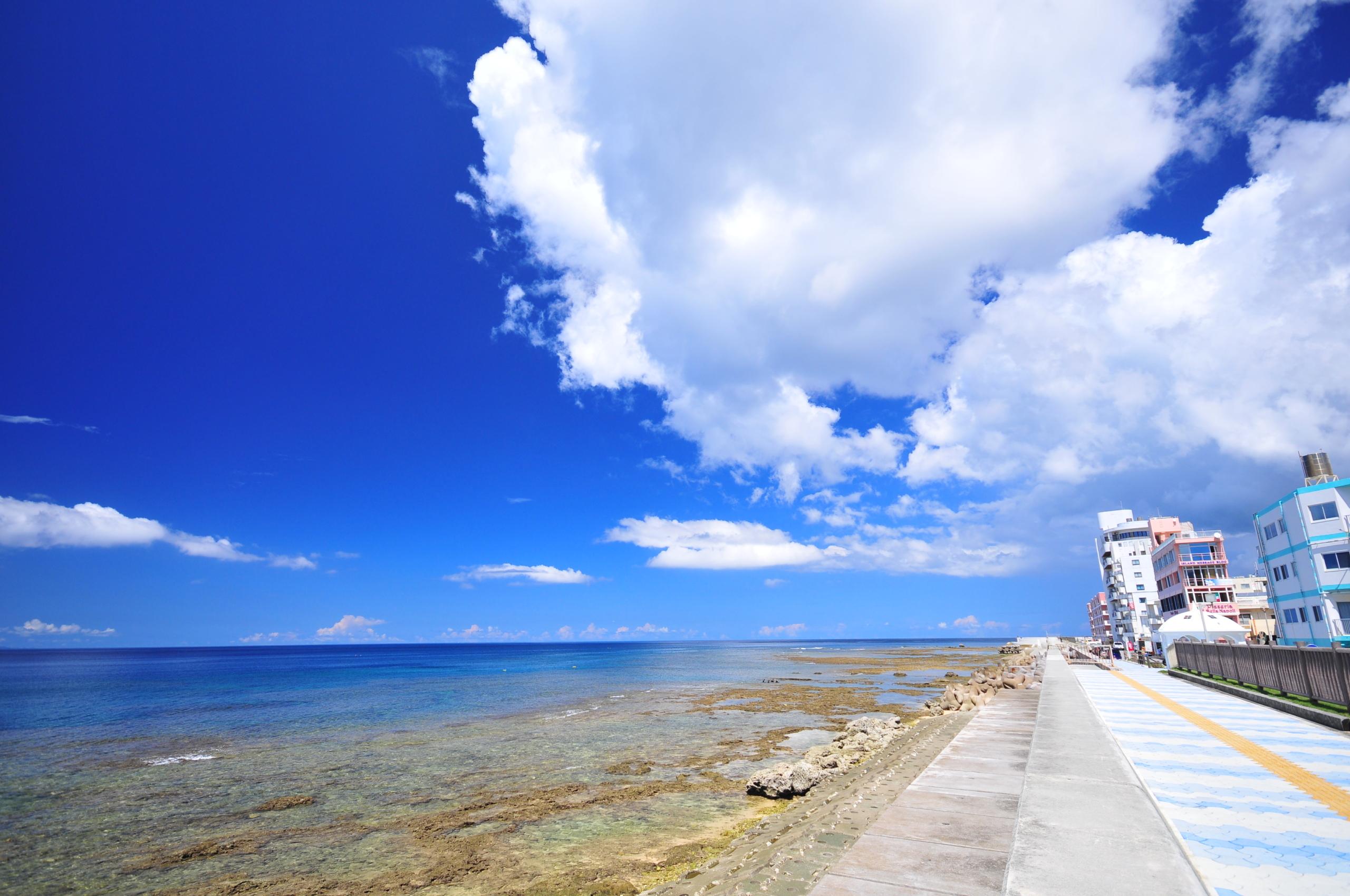 宮城海岸(砂辺)3