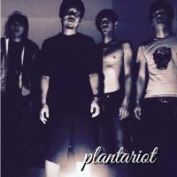 PLANT A RIOT