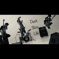 Duck Slow Life