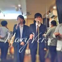 HaryVerse