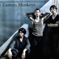 The Eastern Monkeys