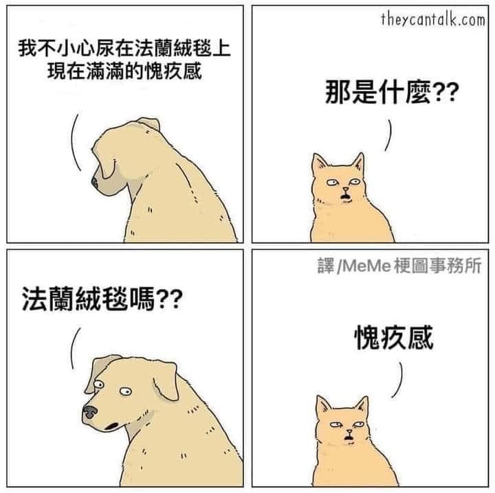 你家的貓咪也是這樣嗎? 的封面圖片