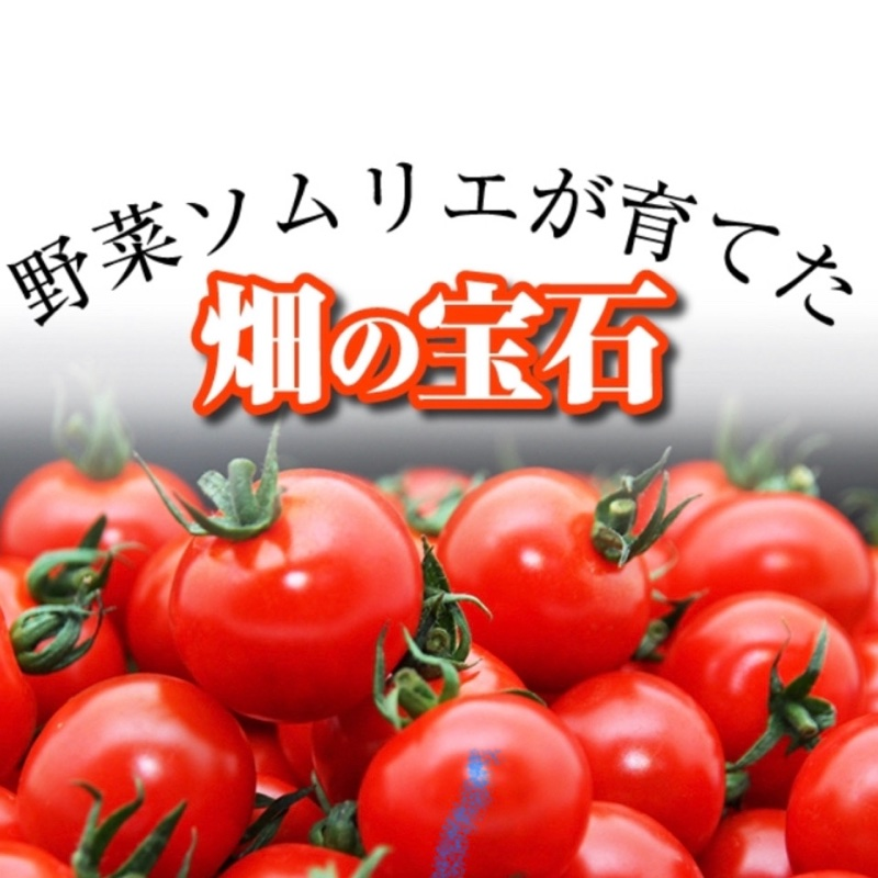 畑の宝石 玉名市 果物や野菜などの宅配食材通販産地直送アウル