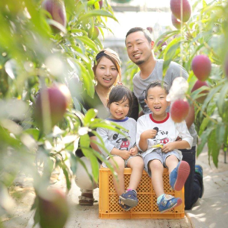 たなか果樹園 芦北町 果物/その他果物通販