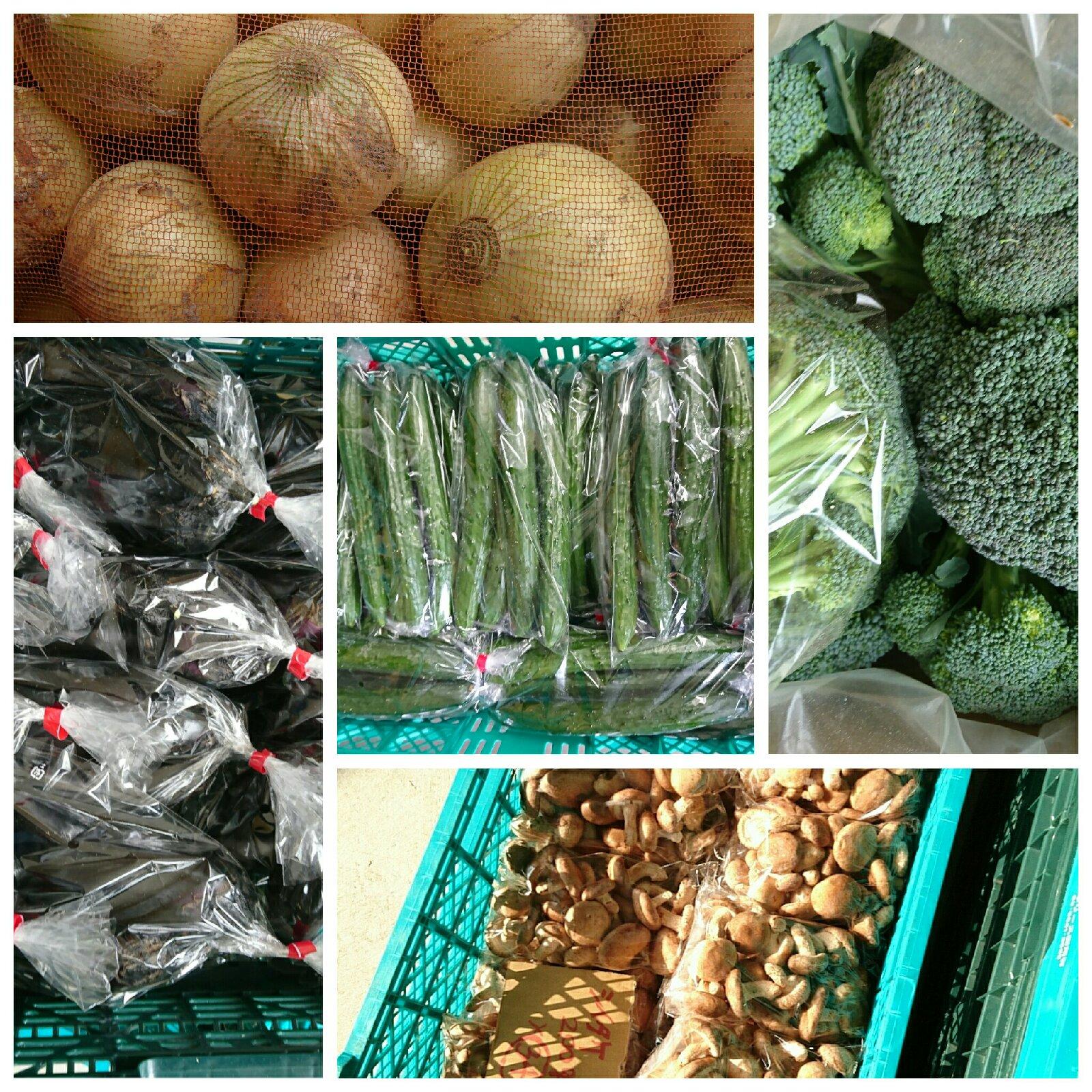 福袋野菜セットno.2 野菜/セット・詰め合わせ通販