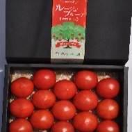 ルージュフルーツトマト 正味1kg 野菜/トマト通販