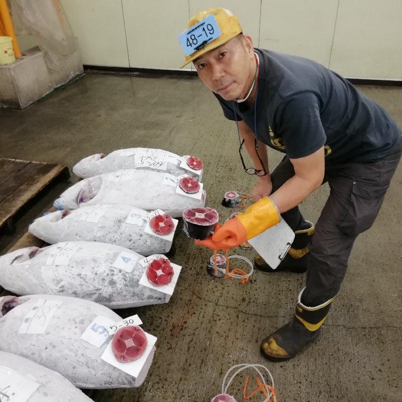 福光 藤枝市 魚介類/マグロ通販
