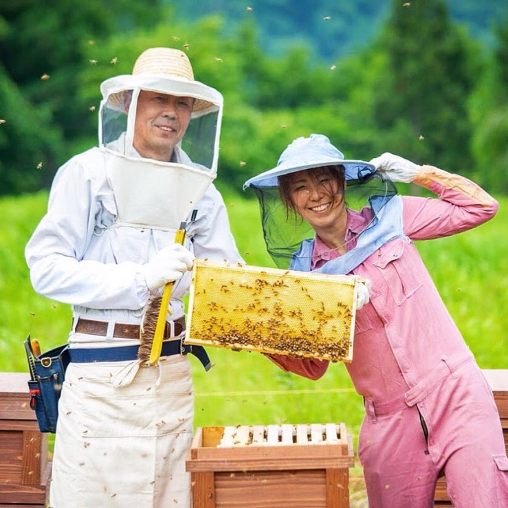 巣鴨養蜂園 豊島区 はちみつ/はちみつ通販