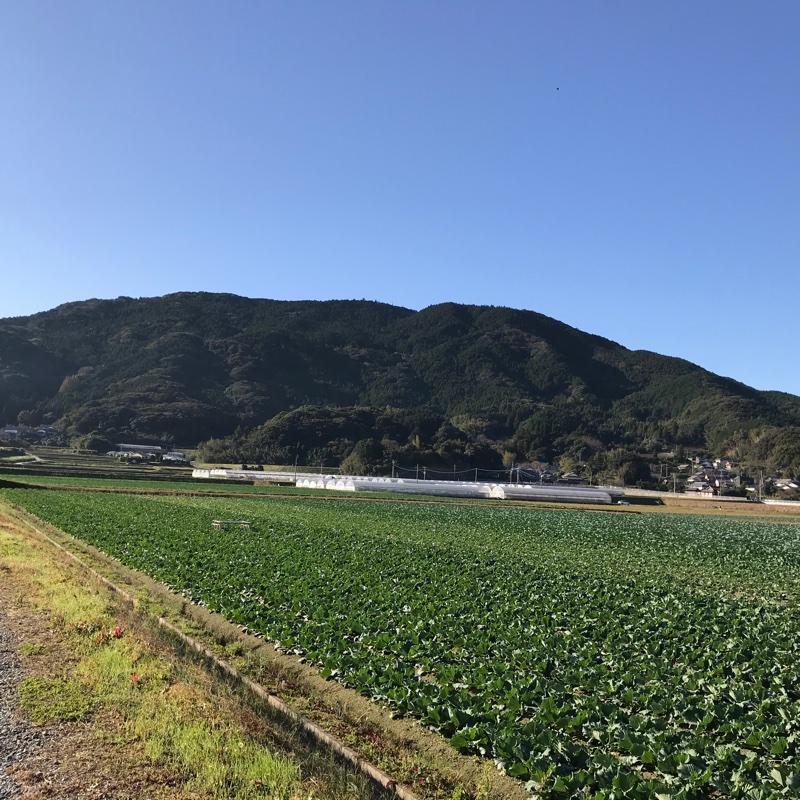 Itoshimasoil 糸島市