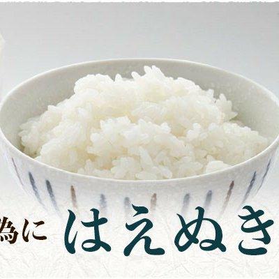 コロナで困っています。給食に出されるお米10kg(はえぬき) 10キロ 米/米通販