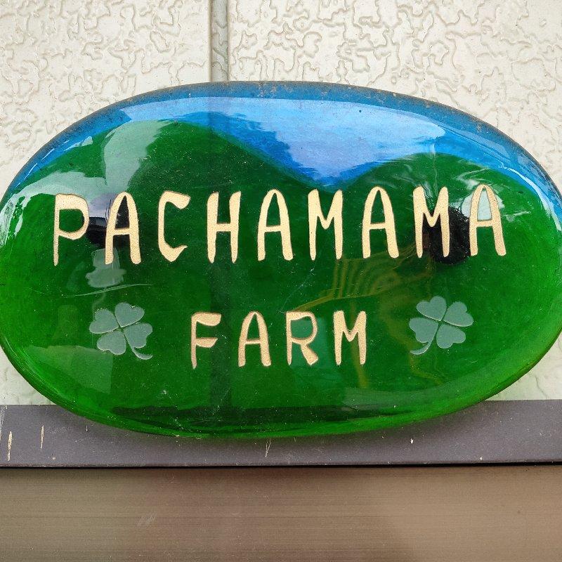 Pachamama キーワード: 数量限定 通販