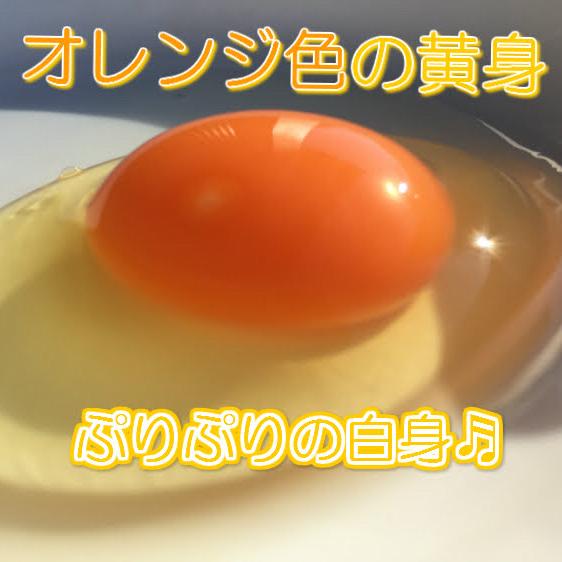 【赤たまご50個】陶芸の里、益子でうまれた赤たまご50個
