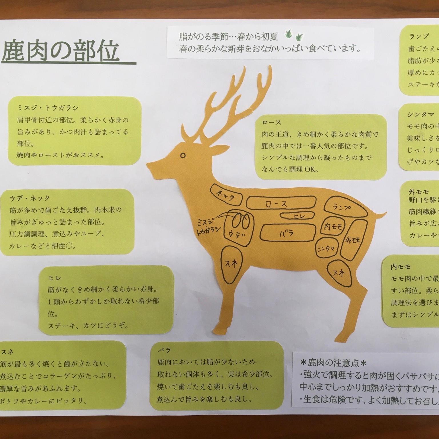 【お試し】初心者歓迎ジビエ食べ比べセット(各部位紹介パンフレット付き) 猪肉約400g、鹿肉約400g   計約800g 肉/猪肉通販