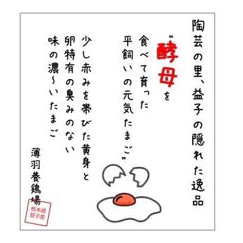 【酵母・平飼い30個】酵母を与えて育てた平飼いたまご(元気たまご) 30個 卵/鶏卵通販