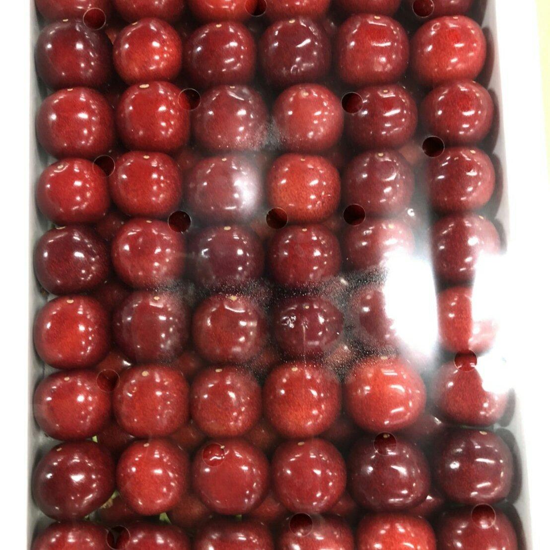 さくらんぼ500g+おまけvegetable 果物/さくらんぼ通販
