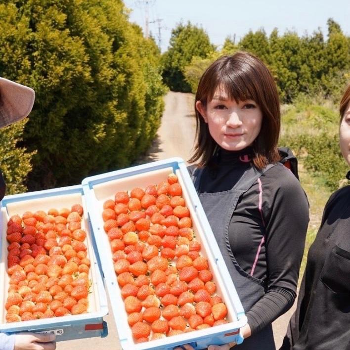 平川いちご農園 玄海町 果物や野菜などの宅配食材通販産地直送アウル