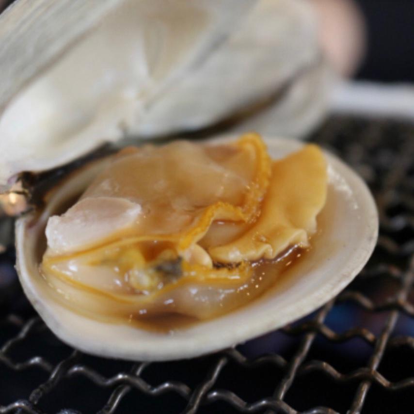九十九里地はまぐり 3キロ入 千葉県ブランド水産物認定品 3キロ入 魚介類/蛤通販