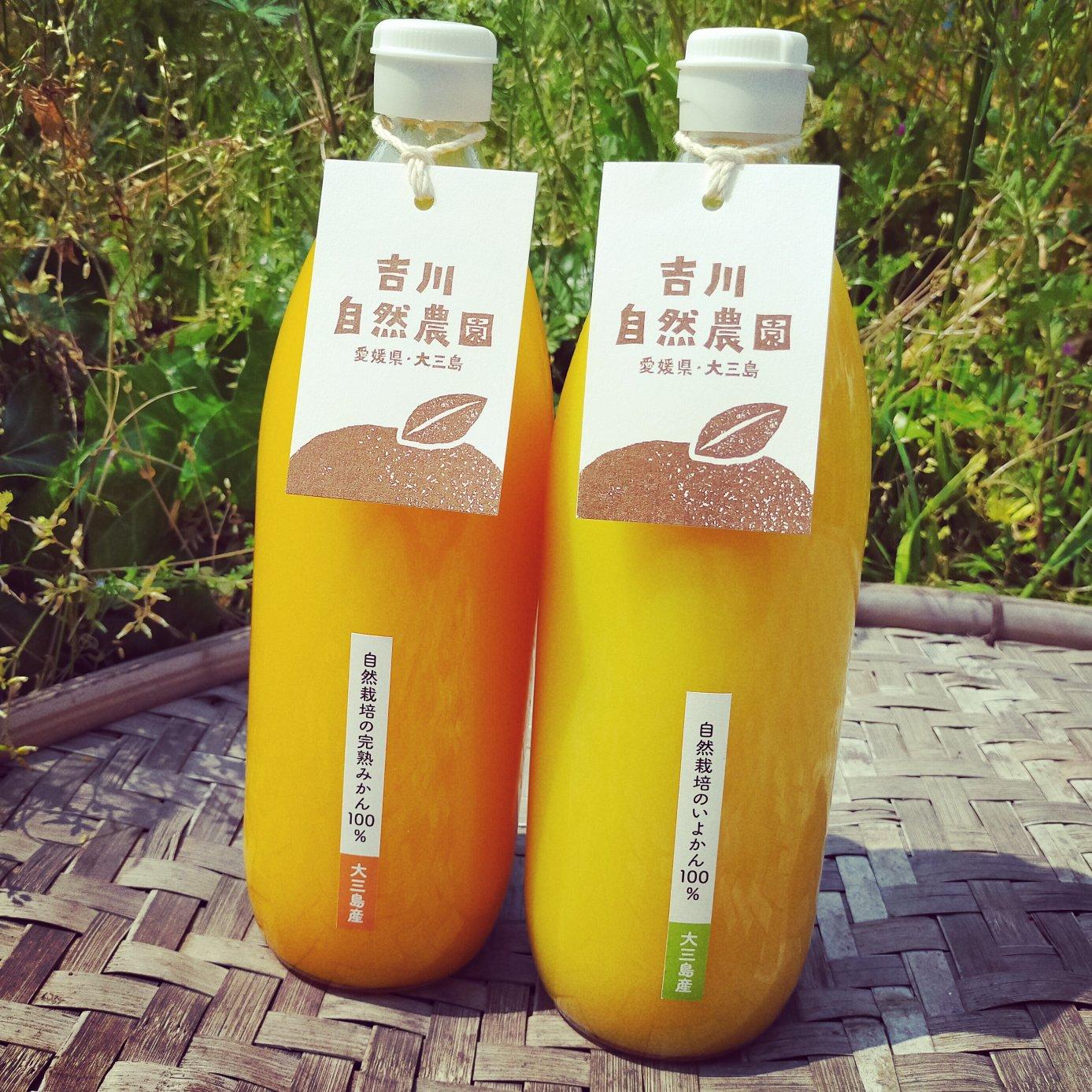 【飲み比べセット】無添加柑橘ジュース 1000ml×4本(温州みかんジュースと伊予柑ジュース各2本ずつ) 飲料/ジュース通販
