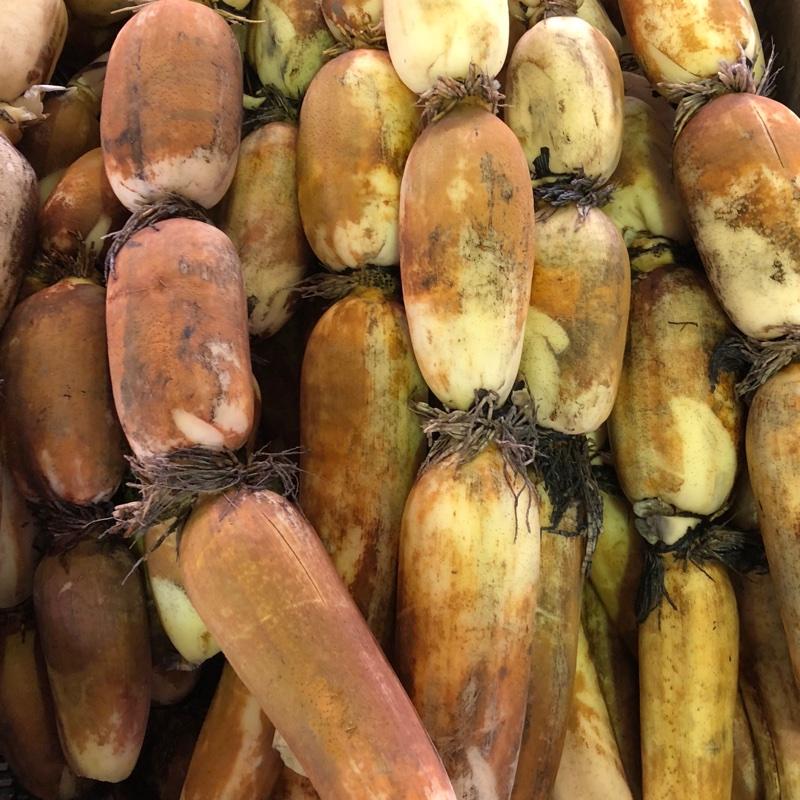 中橋農園 金沢市 果物や野菜などの宅配食材通販産地直送アウル