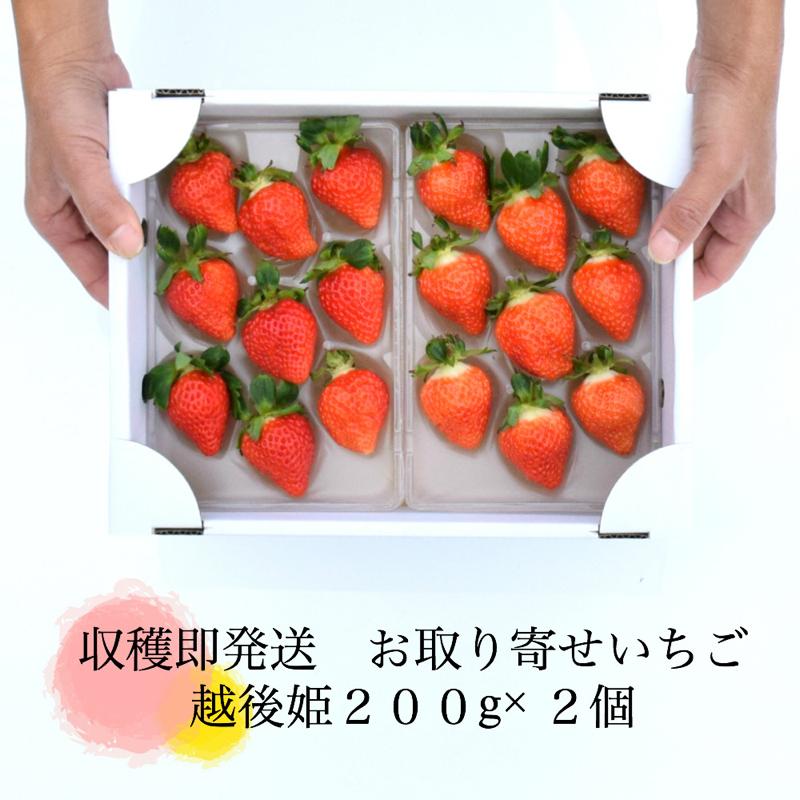越後姫400g(200g✖️2つ)