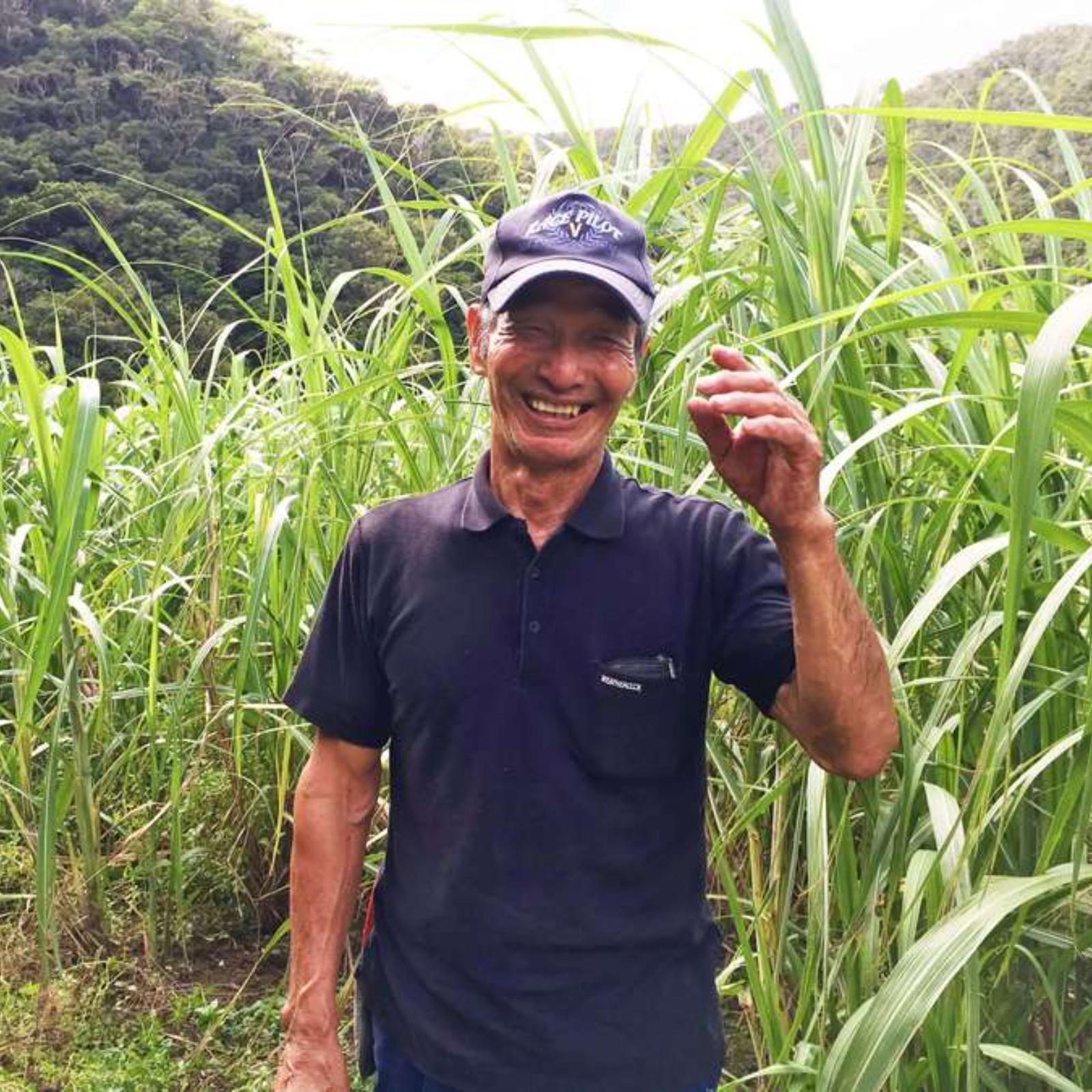 加計呂麻島 タイケイ製糖 加工品(その他加工品) 通販