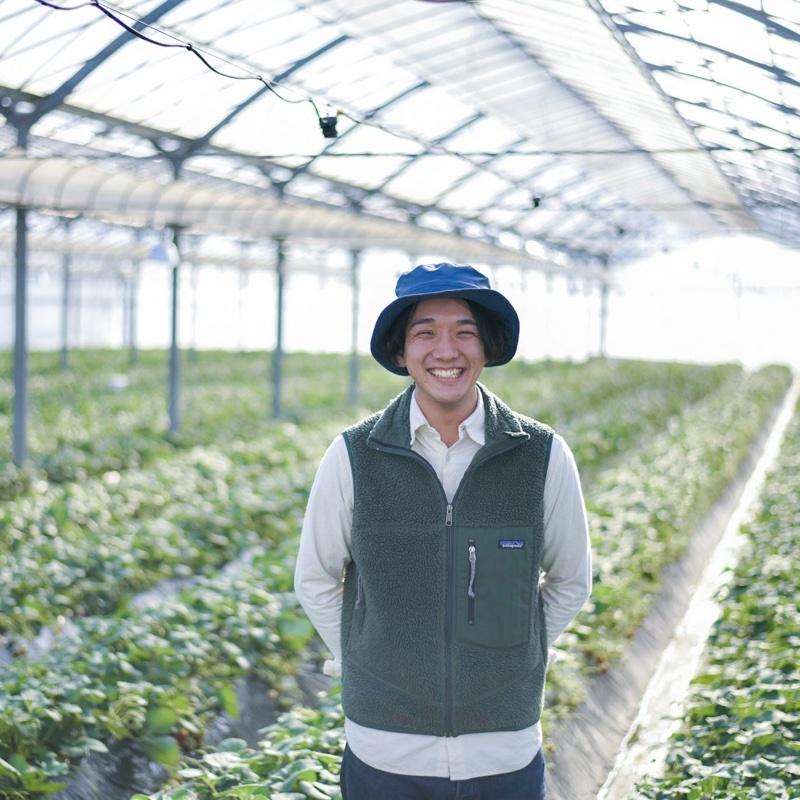 森いちご農園 大田原市 果物や野菜などの宅配食材通販産地直送アウル