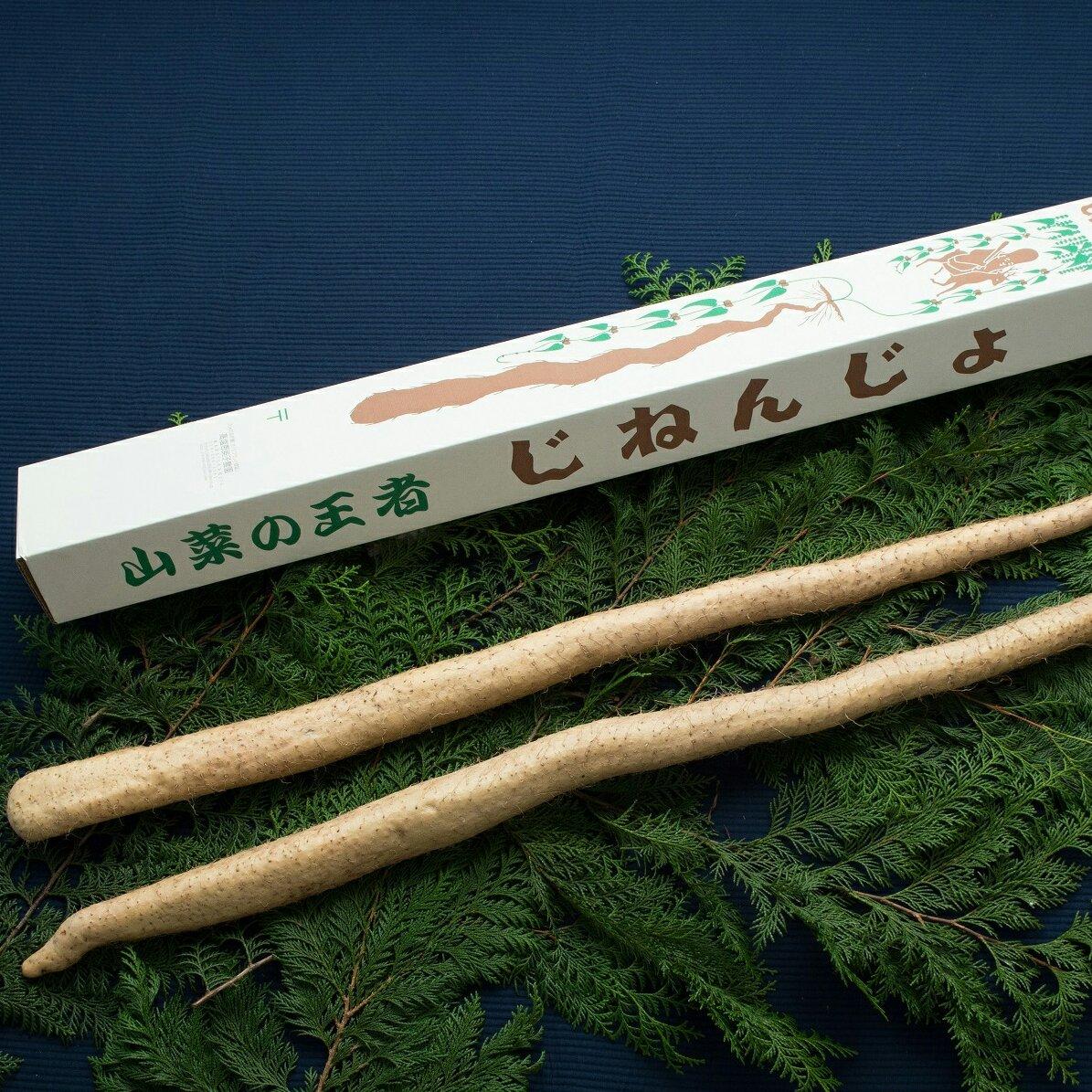 えみの自然薯2本 2本1.5kg以上 野菜/その他野菜通販