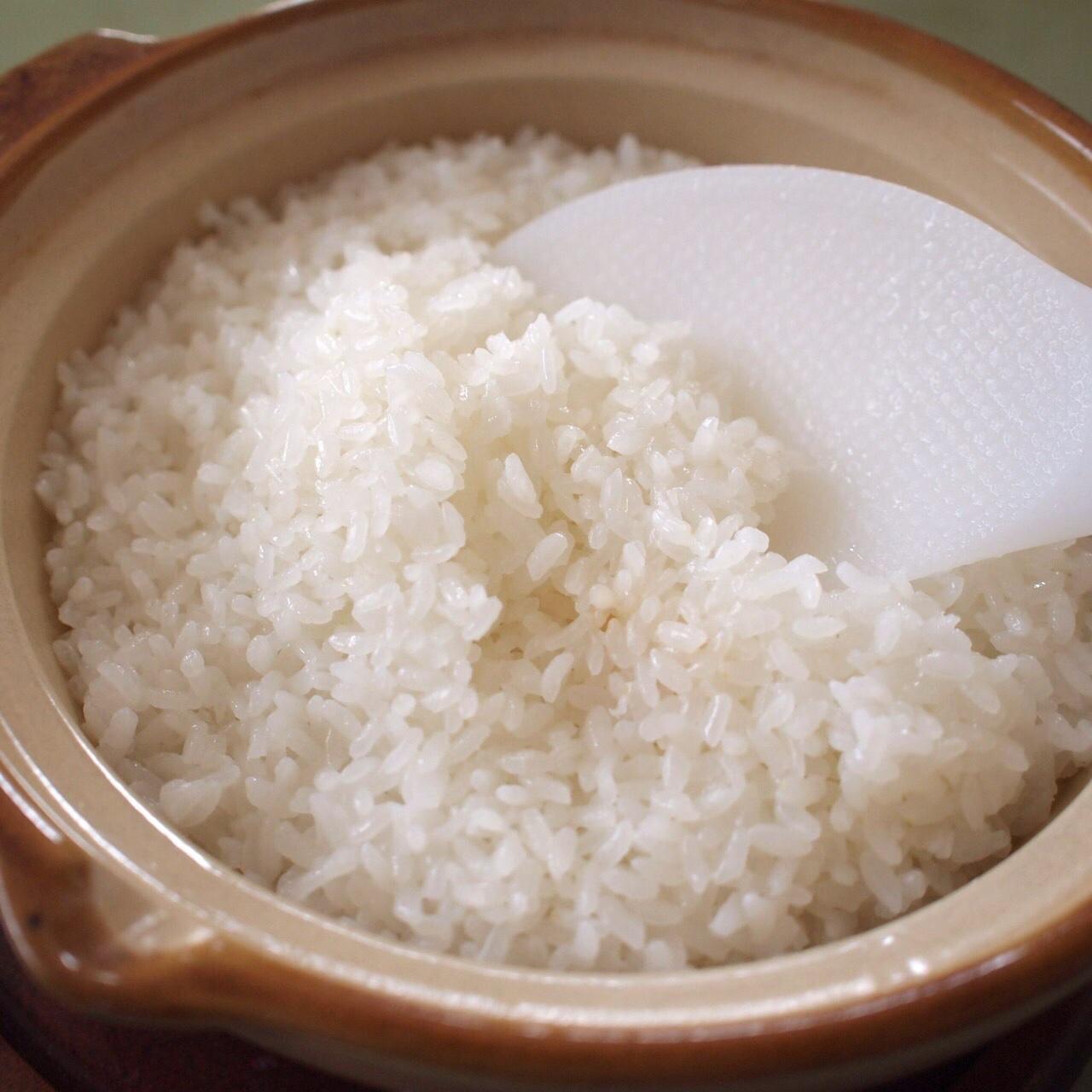 樫村ふぁーむの旬の野菜お任せBOX+コシヒカリ2kg 野菜6~8品、米2kg 野菜/セット・詰め合わせ通販