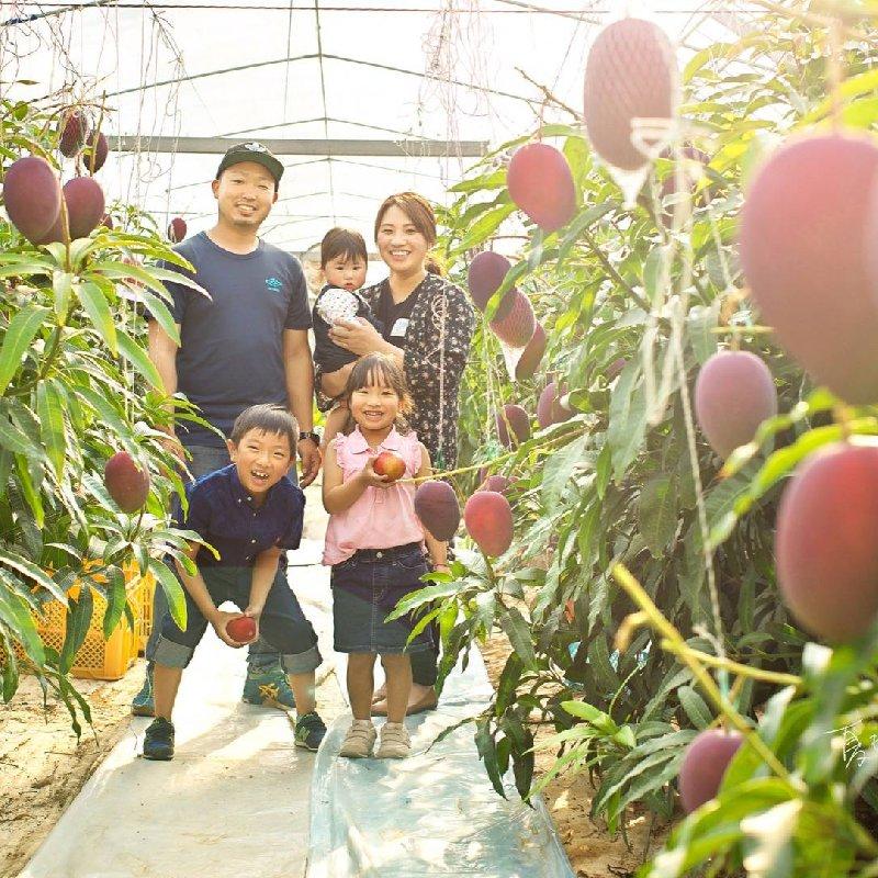 たなか果樹園 芦北町 果物や野菜などの宅配食材通販産地直送アウル