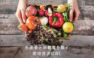OWLはこだわりが詰まった野菜などの食材を農家から購入できる産地直送の食品・食材通販サイト。