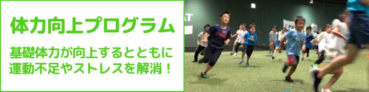 継続的な運動で基礎体力を向上させる体力向上プログラム|EPARKスポーツ