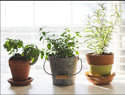 3 Projects for making good use of your time at home