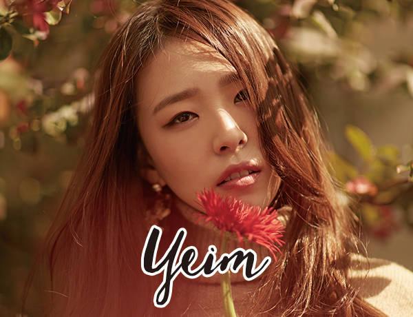 Yeimt(ソロ)