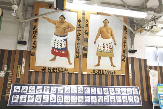 ▲相撲にまつわる展示がたくさん