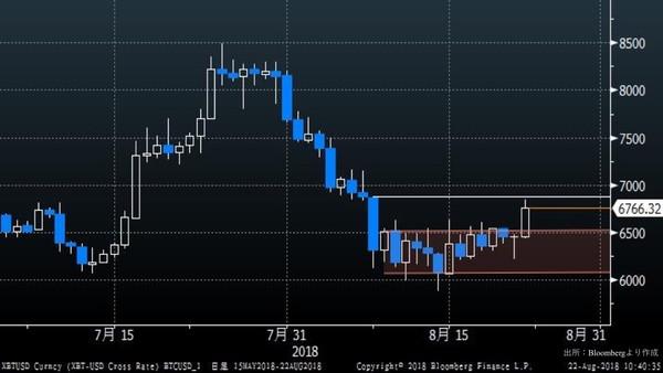 コイン チャート ビット ドル