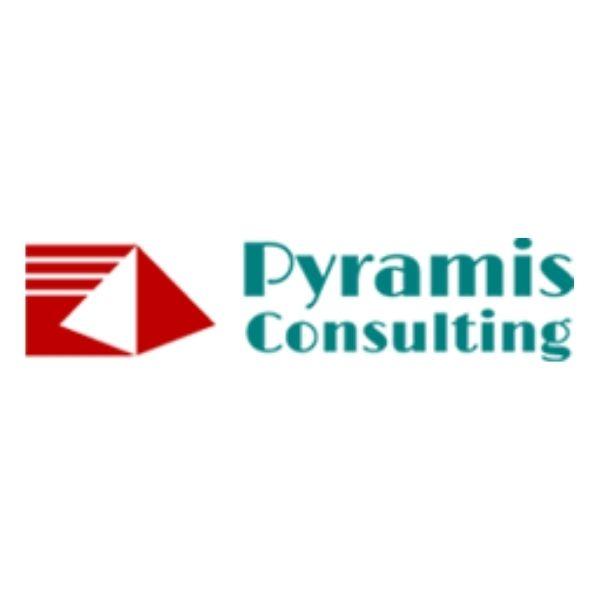 株式会社ピラミス・コンサルティング