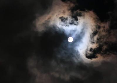 夜空を見上げて、天体観望を日々の楽しみにする。【コロナに負けるな! いまだからできること #14】