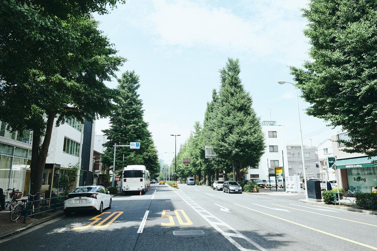 都会の中心にありながらも、落ち着く街