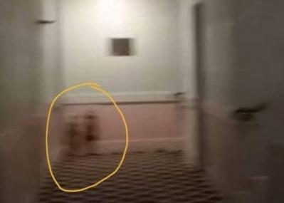 【閲覧注意】リアル『シャイニング』!?  ホテルの廊下に、双子姉妹の「幽霊」が出現【動画あり】