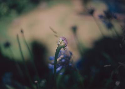瀧本幹也が新作個展『AFTERIMAGE』を開催。敬遠してきた被写体を撮影した理由とは。