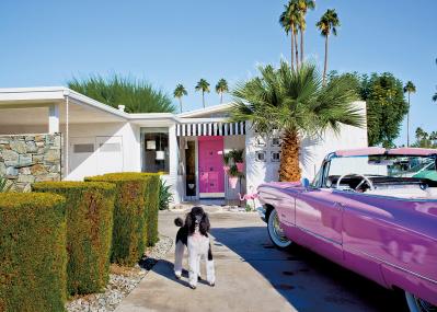 愛すべき犬と暮らす、光あふれる美しい家。