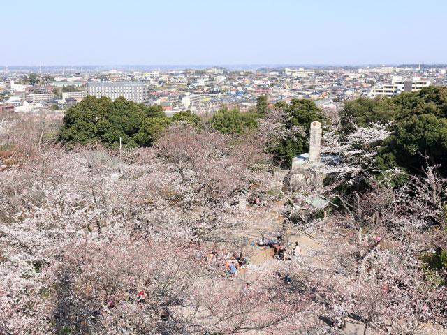 太田山公園