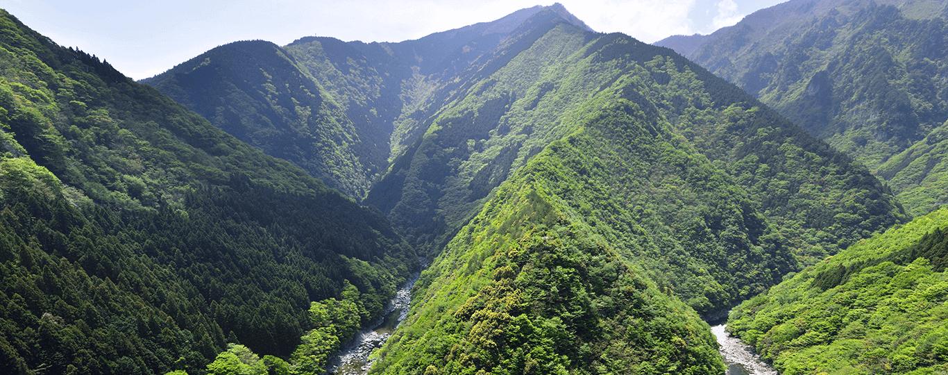 阿波おどりで知られる徳島県は、四国の中でも東に位置する県で、本州からのアクセスは神戸淡路鳴門自動車道を利用するか、岡山県から瀬戸中央自動車道、高松自動車道を利用する経路が一般的。また、東京羽田空港から徳島阿波おどり空港へは1時間10分です。高速バスを利用すれば、大阪から徳島へは約2時間半で到着します。 また、鳴門の渦潮、「大歩危峡 (おおぼけきょう)」など豊かな自然や特殊地形を堪能できる県です。中でも「祖谷渓(いやけい)のかずら橋」は、シラクチカズラという植物で編まれたつり橋でスリル満点。毎年多くの観光客が訪れます。JR大歩危駅から車で約20分。マイカーか、レンタカーを利用するのがおすすめです。 万葉集にも読まれている「眉山(びざん)」からは、徳島が一望できます。ここからの夜景は日本夜景100選の一つに選出されているため、夜に訪れる観光客が多いです。ロープウェイもありますが、夕方で運行が終了しますので、夜景目的の方は車で行くのが良いです。山頂には無料駐車場があります。 また、徳島には自然だけでなく、芸術を楽しめるスポットもあります。淡路島にほど近い鳴門公園に位置する「大塚国際美術館」には古代から現代までの作品が1000点以上、オリジナルの大きさで陶板特殊技術により再現、展示されています。ゴッホやピカソなどの復元作品も見ることができます。神戸淡路鳴門自動車道・鳴門北ICより、車で3分とアクセスもしやすい場所です。