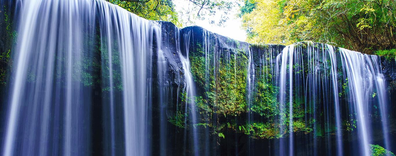 熊本県は九州の中央部に位置しており、西部は海に面した熊本平野や八代平野、東部には阿蘇山などの山々が連なっています。山や川などの雄大な自然を感じられるスポットや温泉地が豊富です。江戸時代には肥後熊本藩が置かれ、初代藩主・加藤清正によって1607年に築城された熊本市中心部の「熊本城」は、今も多くの観光客が訪れるスポットとなっています。武者返しと呼ばれる石垣やスケールの大きさが特徴で、江戸時代の暮らしや当時の建築様式などの歴史が学べます。 熊本市から車で約1時間半の阿蘇市には火山を含む阿蘇山が連なっておりトレッキングや、火口周辺の大草原で牛や馬を見ることが可能。「阿蘇ファームランド」は阿蘇の自然の中で体を動かす、美味しい物を食べるいった健康作りがコンセプトとなっている宿泊施設も兼ねたテーマパーク。「阿蘇カドリードミニオン」にはクマやサルなど多くの動物がおり、動物とふれあったりショーをみたりすることができます。 熊本市から車で2時間ほどの天草市にも観光スポットがたくさんあります。天草市の崎津(さきつ)はキリスト教が禁教とされていた時代に多くのキリシタンが隠れていた場所で、「天草の﨑津集落」は世界遺産にも登録されています。禁教が解かれた後に建てられた「﨑津教会」や潜伏キリシタンが密かに集まっていた「﨑津諏訪神社」などを実際に見ることができます。 熊本には「山鹿温泉」「日奈久温泉(ひなぐおんせん)」など数多くの温泉地もあります。代表的なのが阿蘇郡南小国町の「黒川温泉」で、ここでは宿がそれぞれ異なる泉質の源泉をもっており、さまざまな泉質の温泉に入って回ることができます。