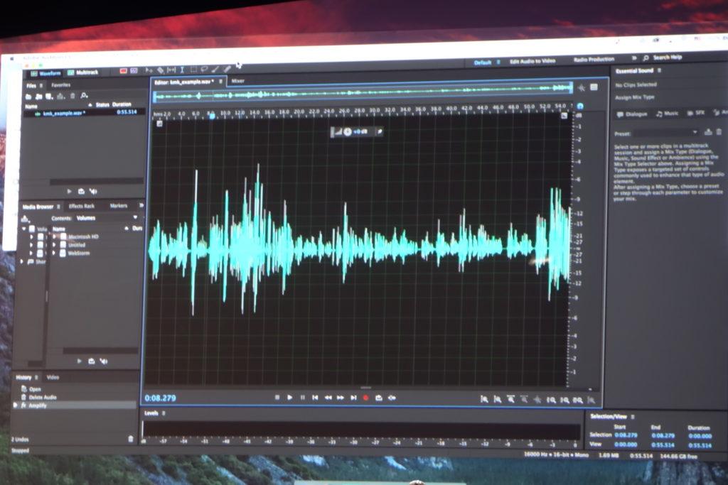 元となる音声データ