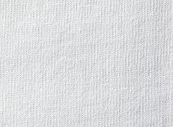 即日Tシャツの生地画像