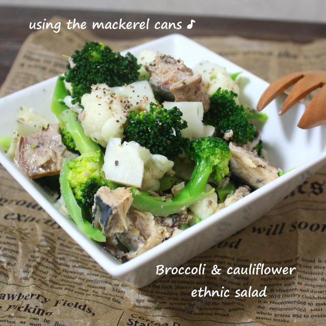 サバ缶で手軽に ブロッコリーとカリフラワーのエスニックサラダのレシピ