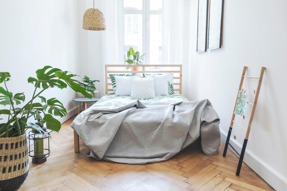 寝室の植物インテリア