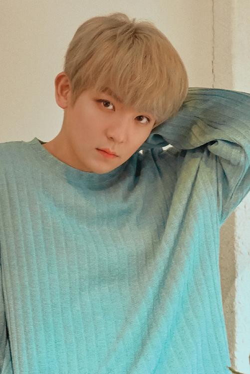 TEEN TOPのメンバープロフィール