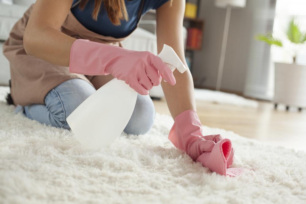 絨毯やカーペットの拭き掃除